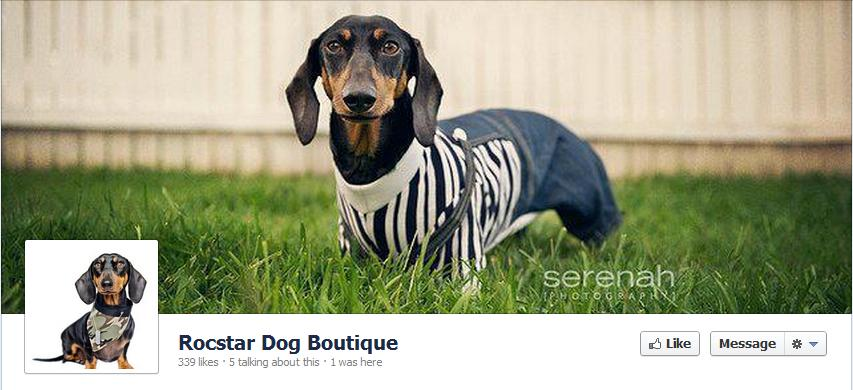 Rocstar Dog Boutique