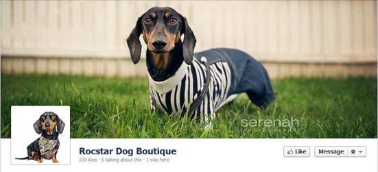 Rocstar Dog Boutique