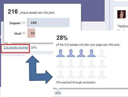 Facebook page status insights